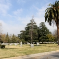 Mountain View Cemetary, Pasadena (Photo:Tim Jones)