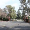 Mountain View Cemetary, Pasadena (Photo:Tim Jones)