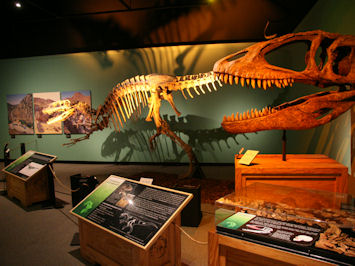 Santa Barbara Museum Of Natural History Communicate Science