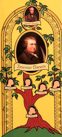 The Other Darwin Genius - Erasmus (artwork Graham Paterson)