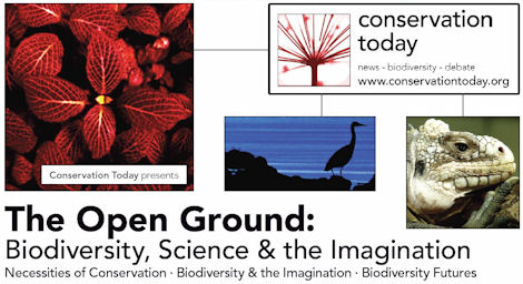Open Ground - come along on 20th June