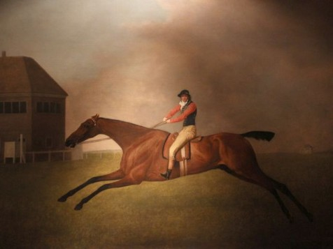 Before photography, the motion of horses in motion was often mis-represented. Baronet with Sam Chifney Up, by George Stubbs.  (Photo: Tim Jones of a painting at Huntington Library)