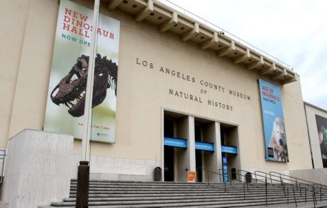 Los Angeles County Museum of Natural History ©Tim Jones