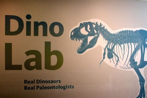 Dino Lab at Museum of Natural History Los Angeles