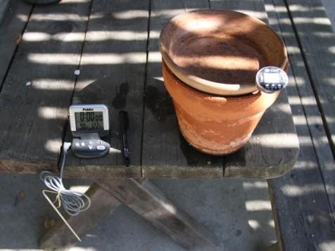 Plantpot water cooler