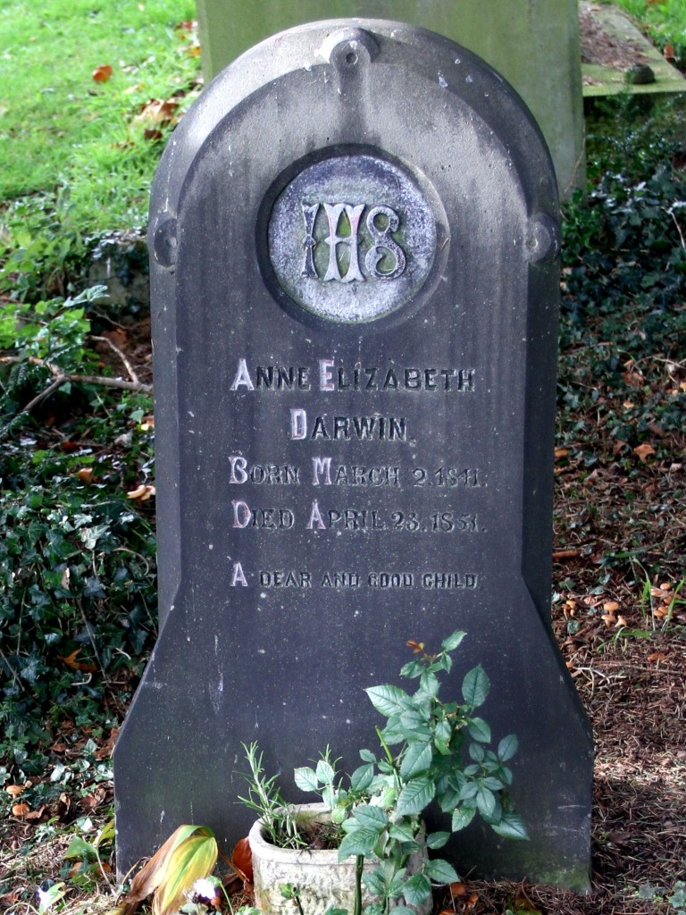 'Annie' Darwin's gravestone at Great Malvern Priory (Photo:Tim Jones)