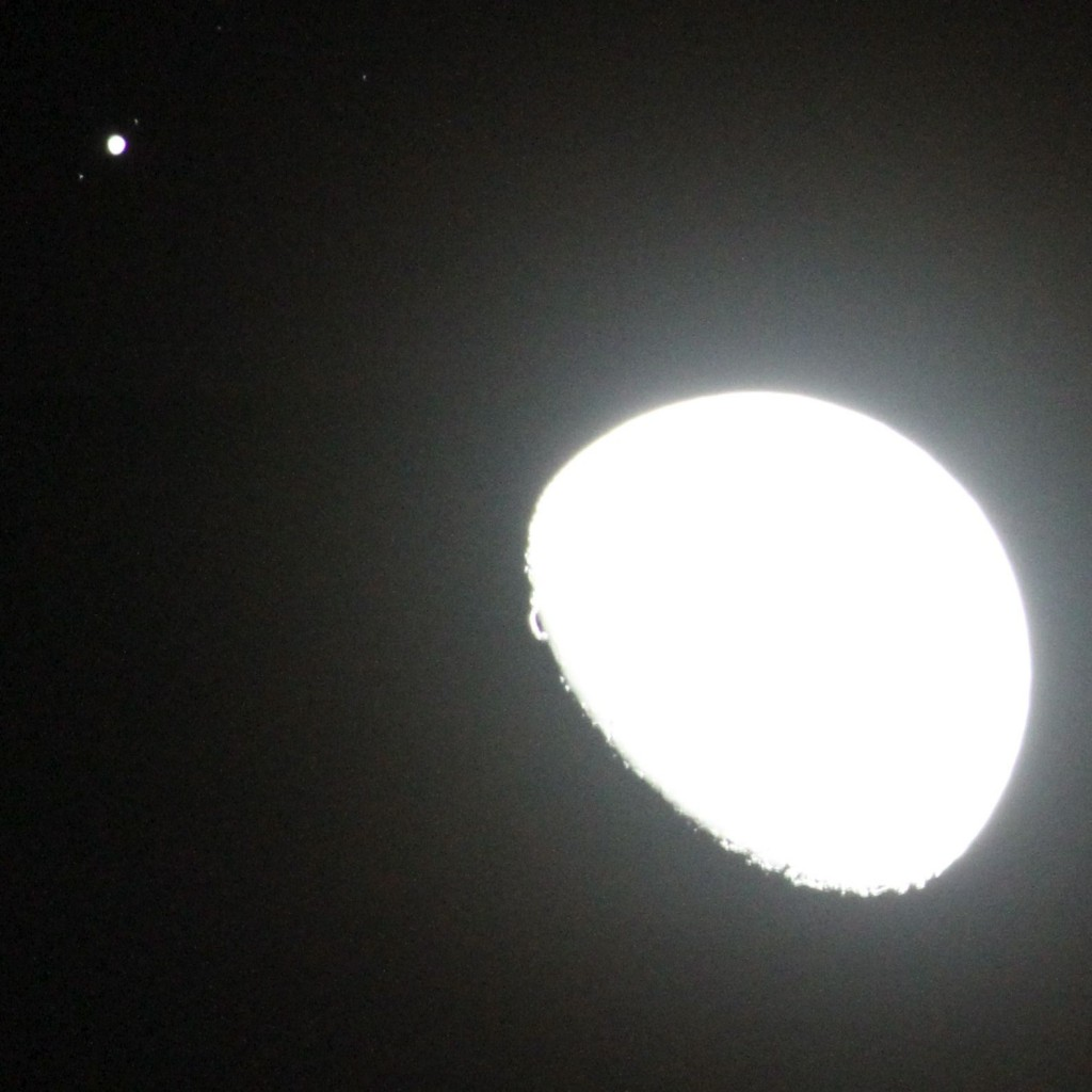 Jupiter and Moon, 18:41 (PST) Los Angeles. ©Tim Jones