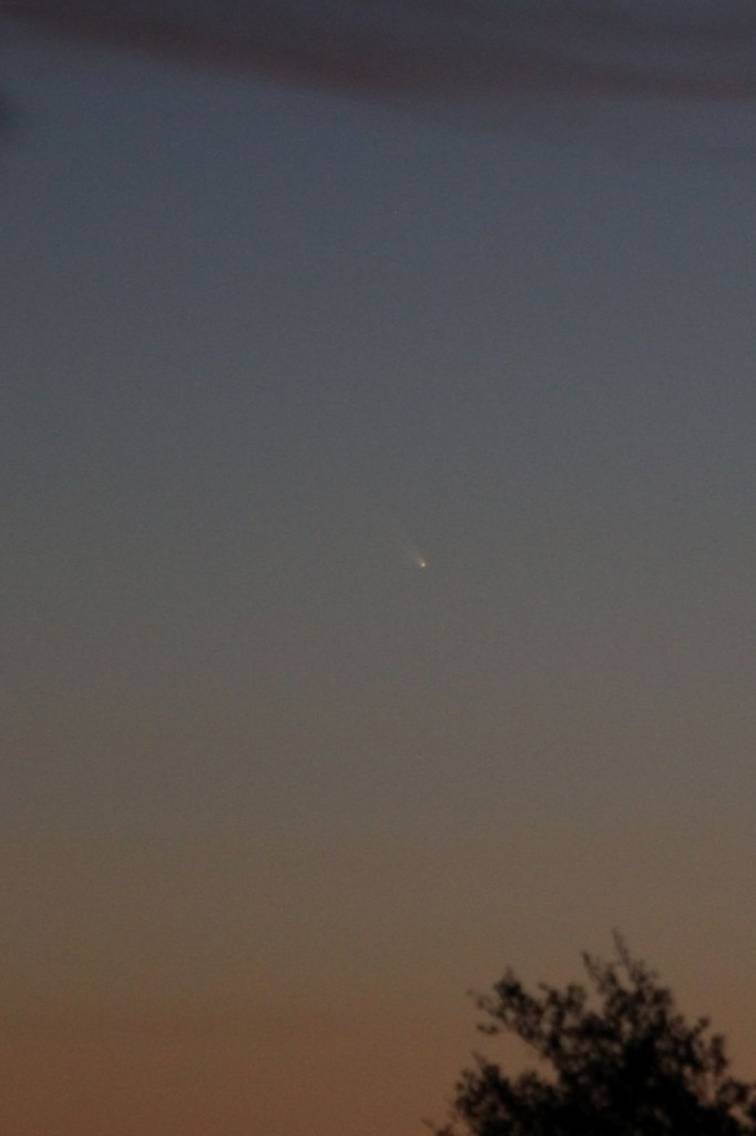 Comet PANSTARRS c/2011 L4 10/03/2013 19:30 PST Los Angeles ©Tim Jones
