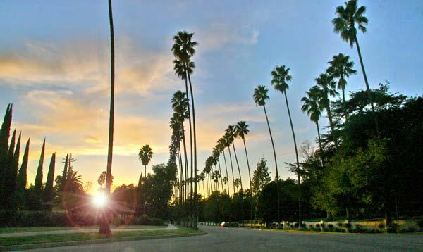 Pasadena ©Tim Jones