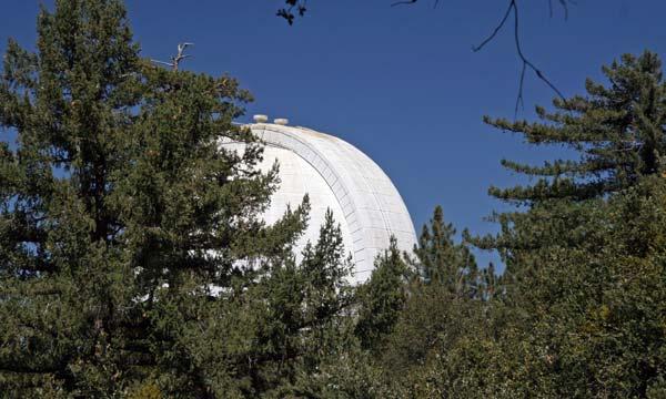 Mount Wilson is covered in trees ©Tim Jones